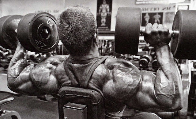 bodybuilding training tips