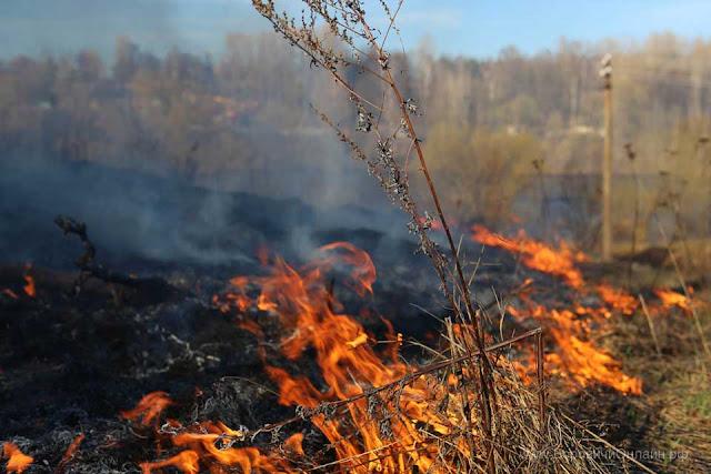 Пошли первые палы сухой травы Сергиев Посад