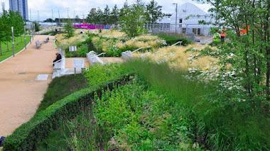 Jardines públicos felices. Olympic Park Londres. Europe Zone otoño 2015