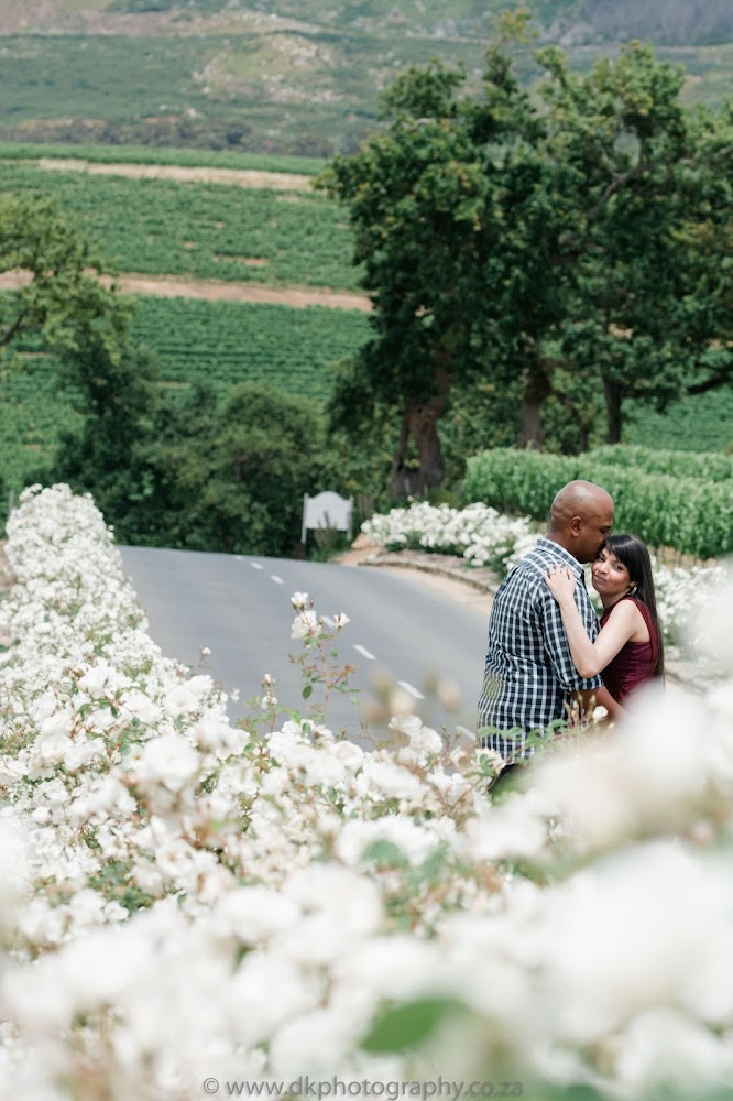 DK Photography CCD_5258 Preview ~ Roxanne & Enslin's Engagement Shoot in Groot Constantia Wine Estate  Cape Town Wedding photographer