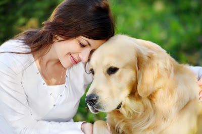 Caring For A Dog Made Easy With This Article