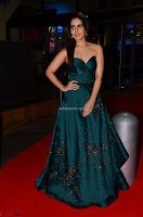 Raashi Khanna in Dark Green Sleeveless Strapless Deep neck Gown at 64th Jio Filmfare Awards South ~  Exclusive 001.JPG
