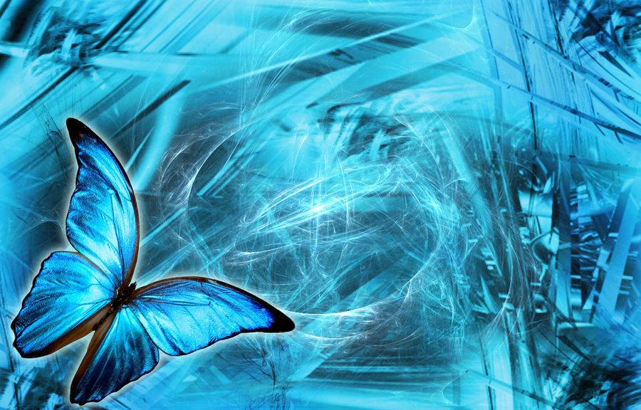 ImagesList.com: Wallpapers with Butterflies 3