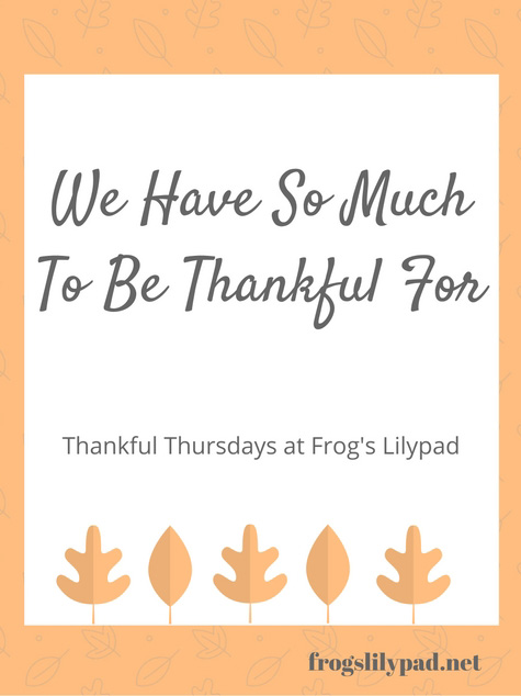 Frog's Lilypad: No matter where we are in life, we have so much to be thankful for. All it takes is a quick look around to find those things.