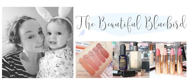 The Beautiful Bluebird Blog