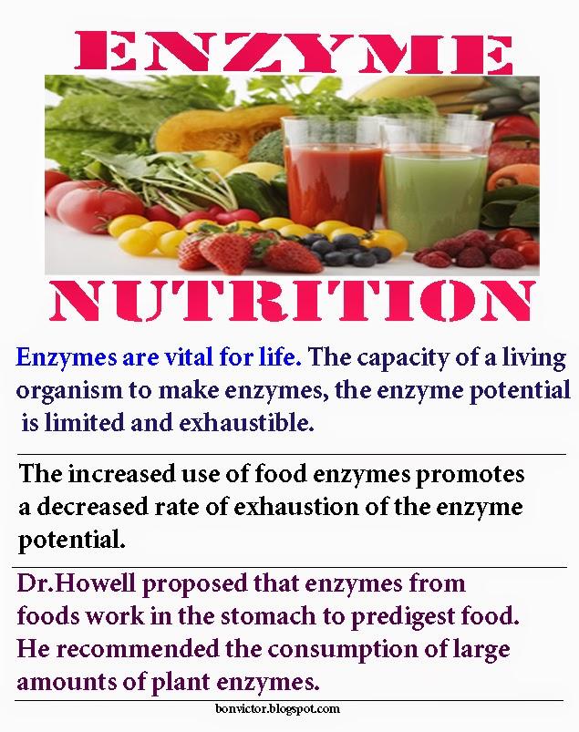bonvictor.blogspot.com: Health benefits of food enzymes