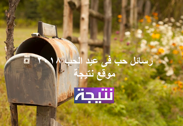 رسائل حب فى عيد الحب 2018 الفلانتين للمخطوبين والمتزوجين رسائل عيد الحب بالانجلش مصرية