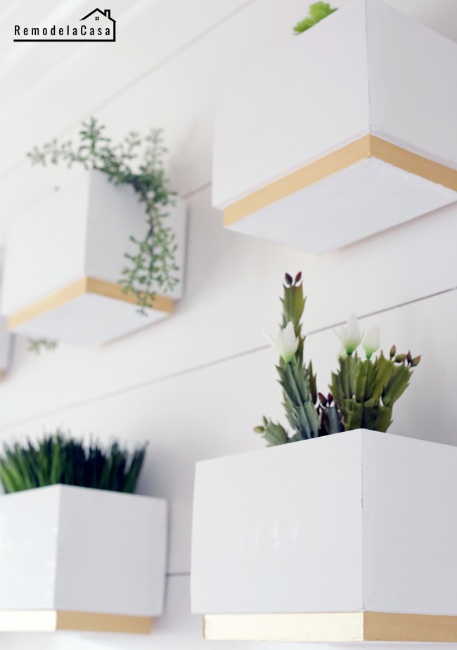 Shiplap boards turned into planters for a gallery wall