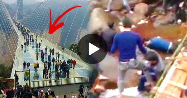 Famous Zhang Jia Jie Glass Bridge In China Collapsed