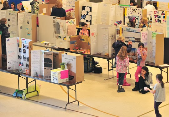 elementary science fair projects