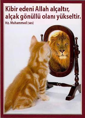 kedi, ayna, aslan, kendini beğenme, kibir, gösteriş, riya, hırs, alçak gönüllü, Hz. Muhammed, hadis,