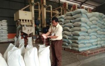 Butuh Waktu 12 Hari, Bulog Sudah Serap 1.500 Ton Gabah di Wilayah Jombang