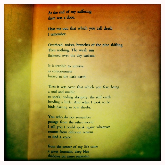 And A Poem To Match Yoga Garden