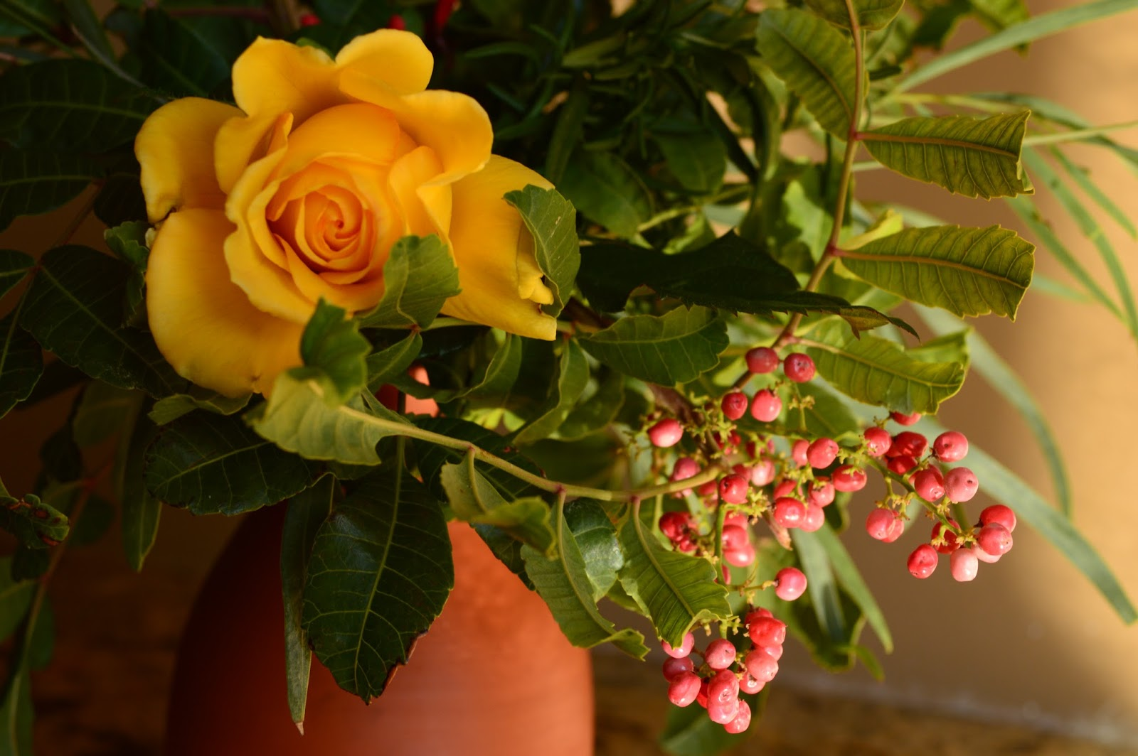 "Rose ""Sun Flare"", Schinus terebinthifolius berries, brazilian pepper tree, Monday vase meme"