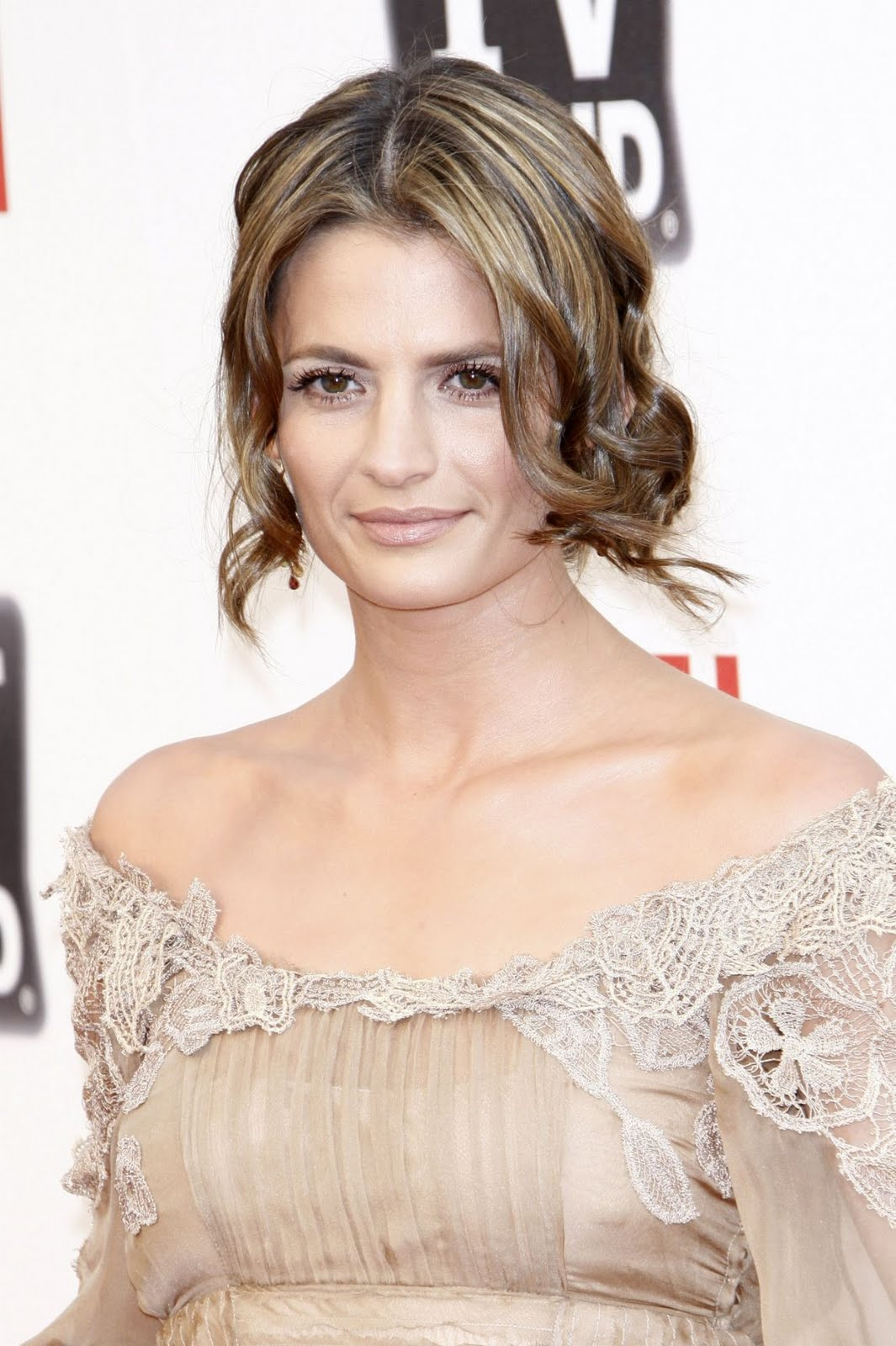 Actress Stana Katic arrives at AFIs 39th Annual