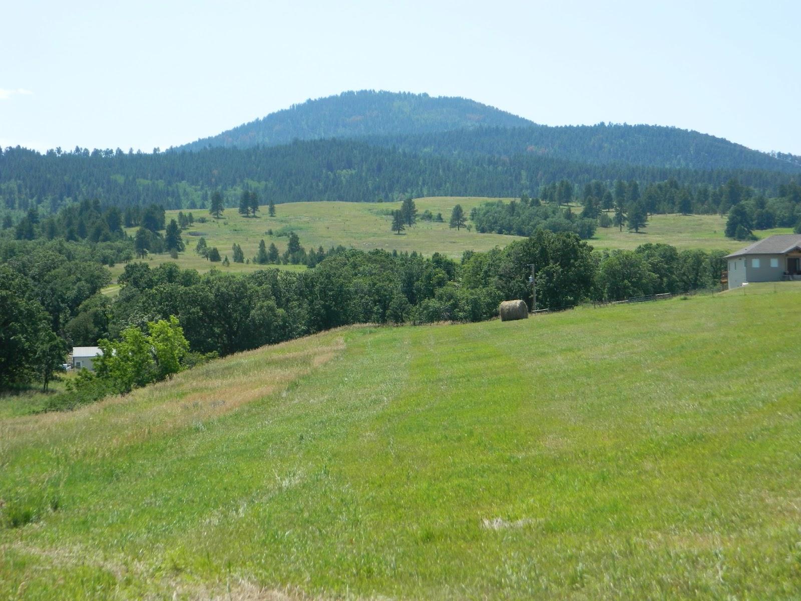 Csms Geology Post Phonolite At Spearfish Peak Black Hills