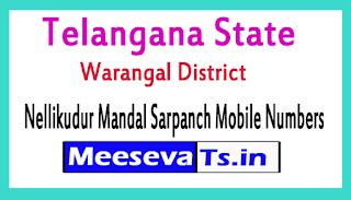 Nellikudur Mandal Sarpanch Mobile Numbers List Warangal District in Telangana State