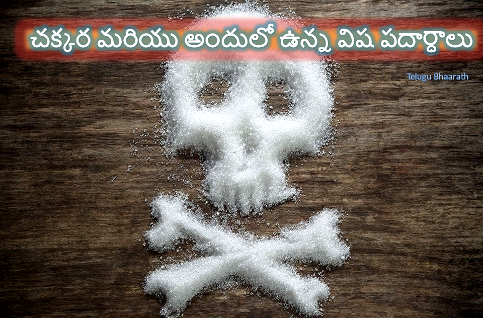 చక్కర మరియు అందులో ఉన్న విష పదార్ధాలు - Sugar and its toxic substances