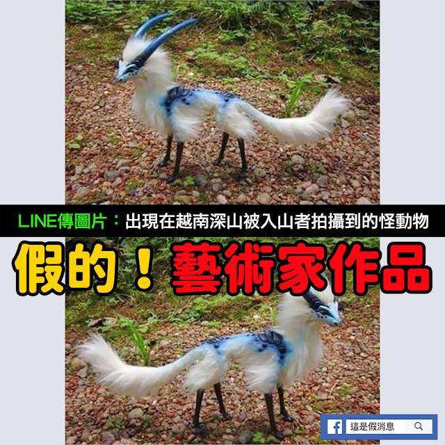 越南 深山 入山者 拍攝 怪動物 謠言 cmwyvern