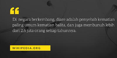 diare di indonesia