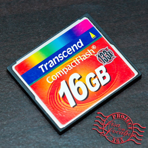 365 photo challenge, Lisa On Location photography, New Braunfels, Texas. Transcend compact flash CF memory card