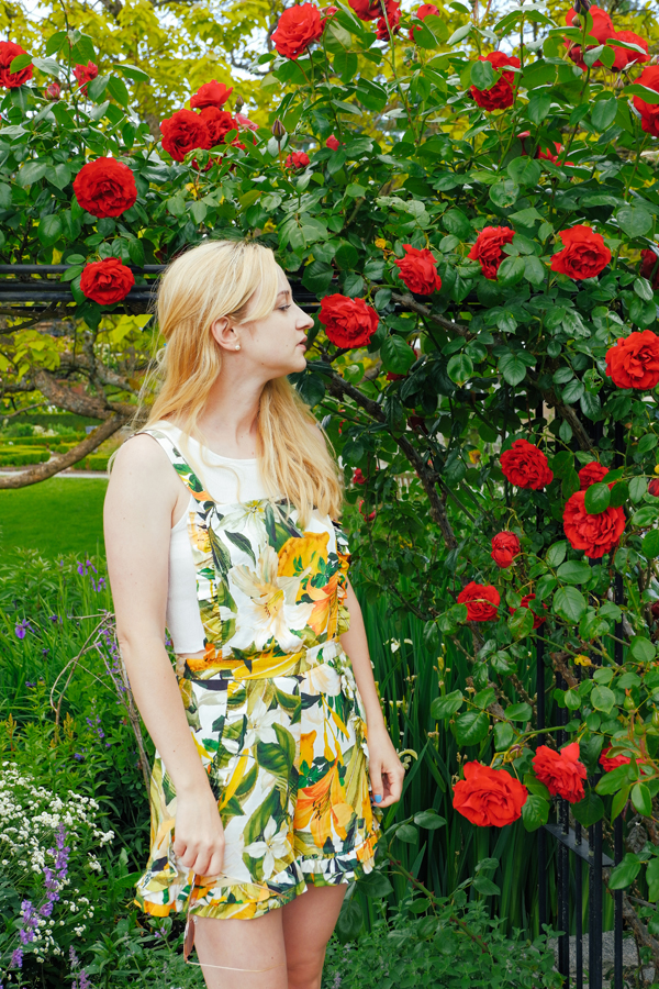red roses, yellow outfit