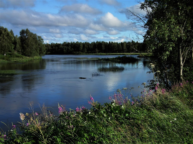 joki, Pyhäjoki, kesä, joki, river
