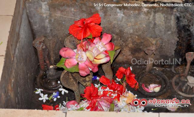 Read here how we celebrate Maha Sivaratri or Jagara in Odisha. significance of maha sibaratri jagara, jagara importance, ମହା ଶିବରାତ୍ରି ଜାଗର ଓଷା ବା ଜାଗର ବ୍ରତ Maha Shivaratri (Jagara) - How we Celebrate, Significance & More — Read in Odia (PDF) jagara siba rati wallpaper odia wishes, messages