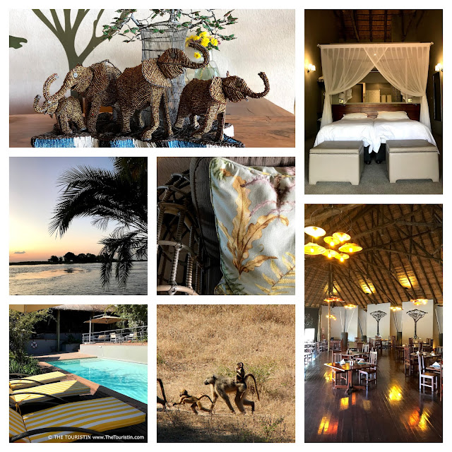 Baboons, beaded elephants and interior design of the room and restaurant at the Chobe Bush Lodge in Kasane in Botswana