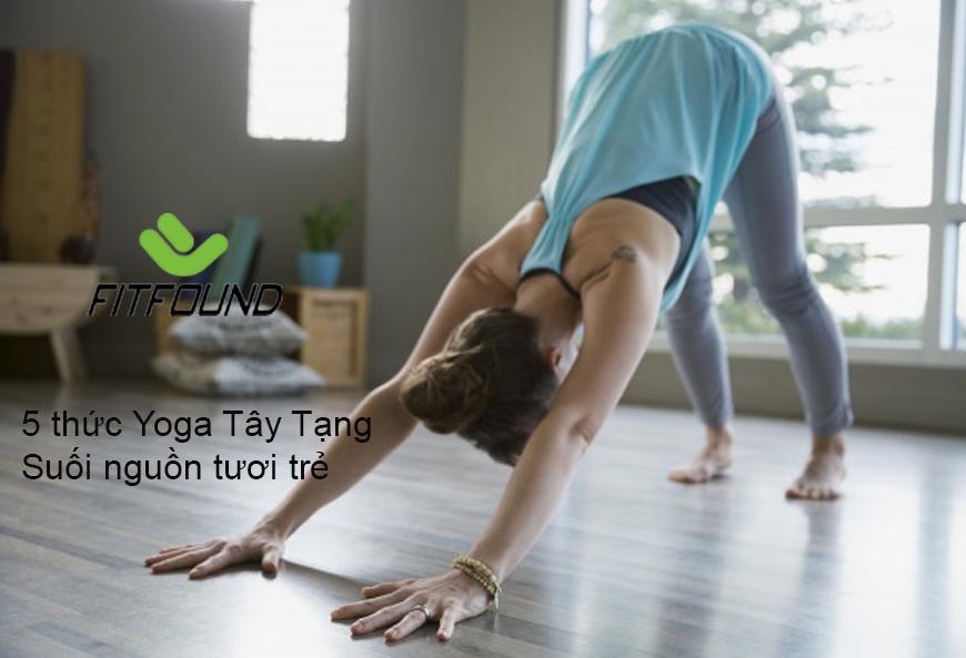 cach-thuc-hien-5-thuc-yoga-tay-tang