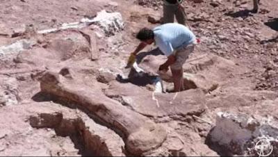 Titanosaurus, Dinosaurus Terbesar di Dunia Seberat 70 Ton
