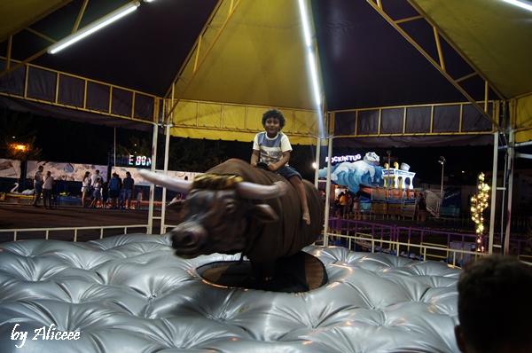 rodeo-parc-de-distractii-statiune-mamaia
