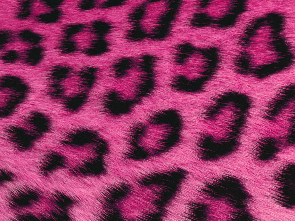 Pink Fur Wallpaper For Bedrooms