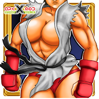 SHE´S FIGHTER X Woman Warriors v1.04 Apk