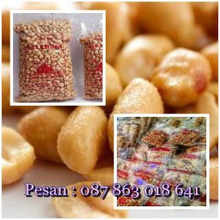 supplier kacang matahari bali