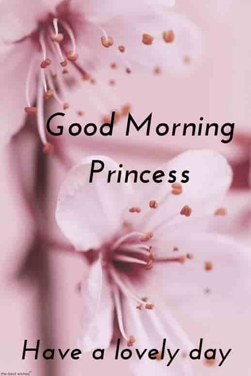 good morning hd image for princess