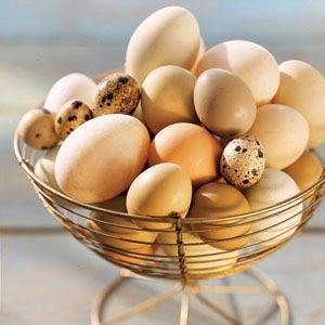 Bạn nên ăn trứng bởi các lợi ích sau đây
