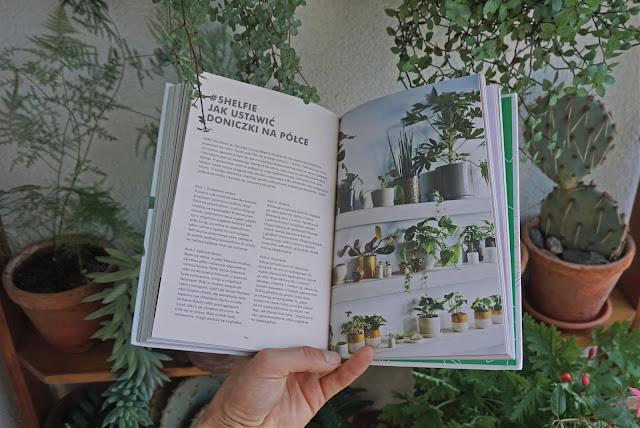 książka o roślinach pokojowych