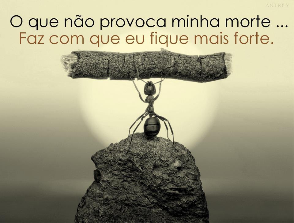 Linda S Frases De Motivacao: Frases Para Motivação No Facebook