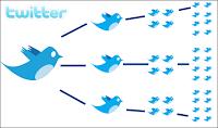 twitterda takipçi kazanma yolları
