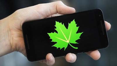 powerful apps Greenify health and optimize your smartphone