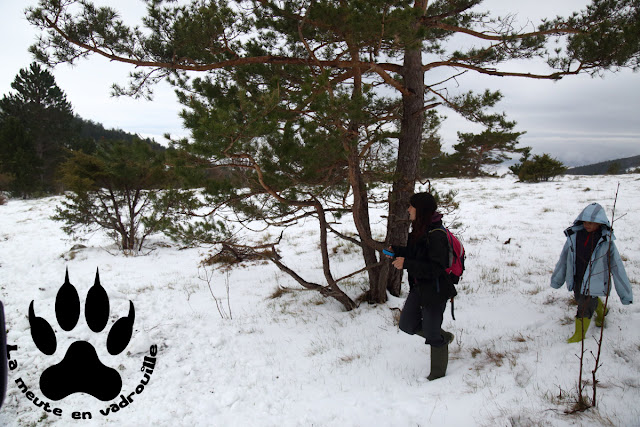 geocaching-neige-ilirska-bistrica-slovenie