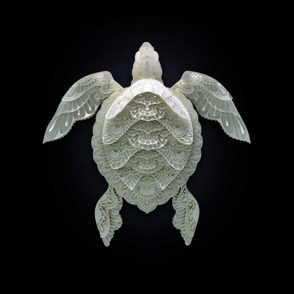 Patrick Cabral behance arte animais papel cortado espécies ameaçadas extinção wwf Tartaruga marinha