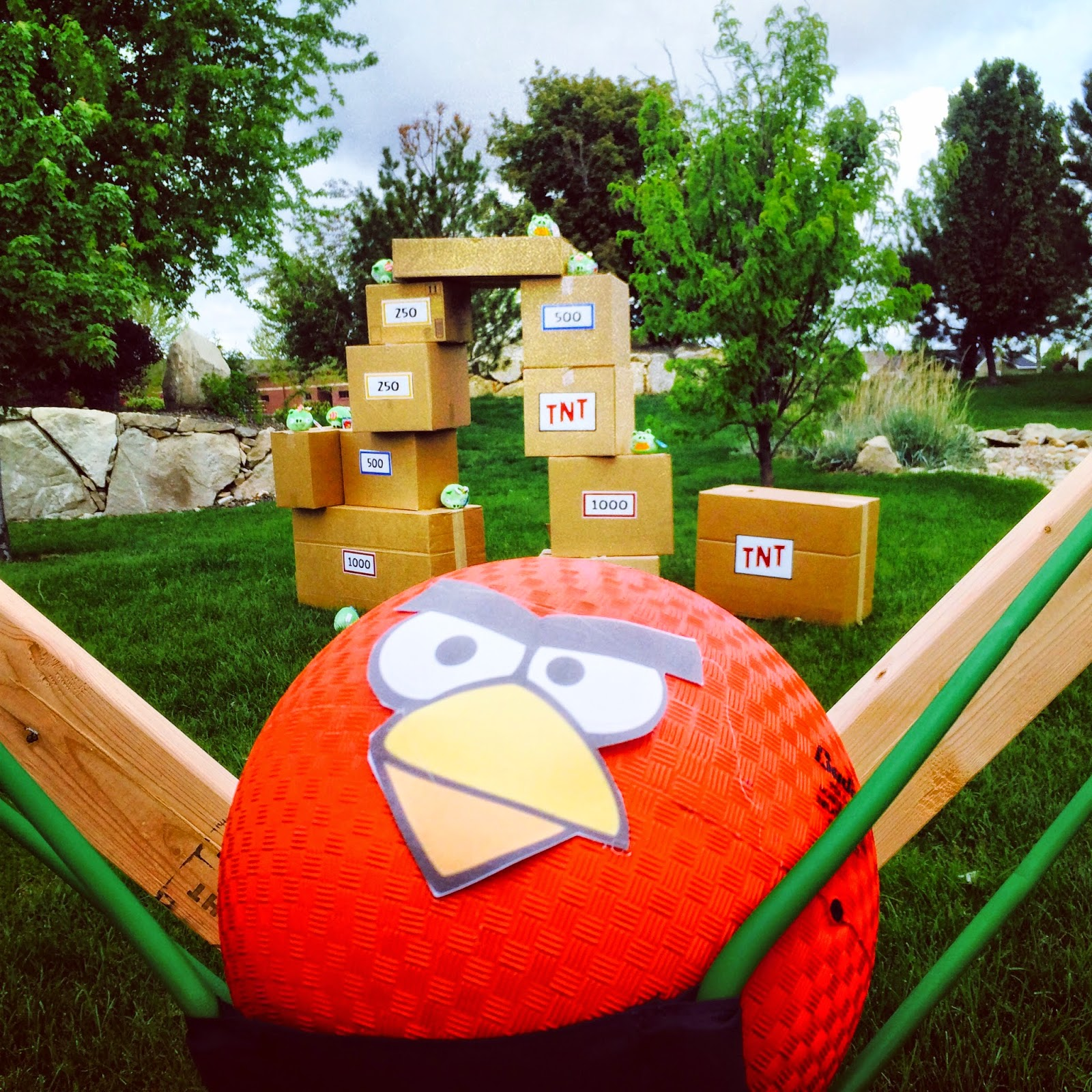 The Jacobs Clan Angry Birds Star Wars Party