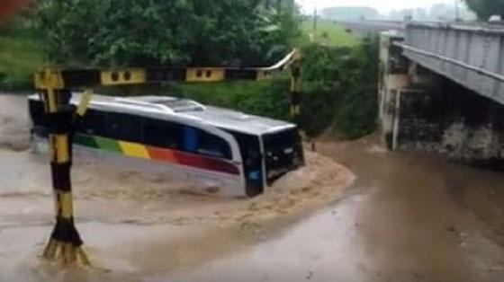 Heboh Video Bus Sinar Jaya Nekat Terjang Banjir di Jalur Bumiayau-Tegal