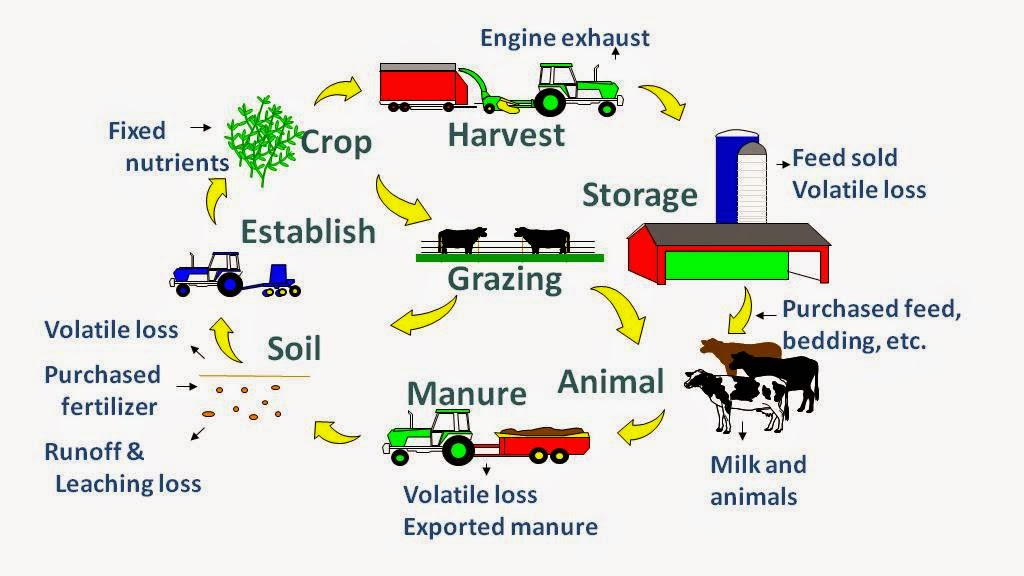 WHATS BURNING IN AGRICULTURE: INTEGRATION IS KEY IN AGRICULTURE