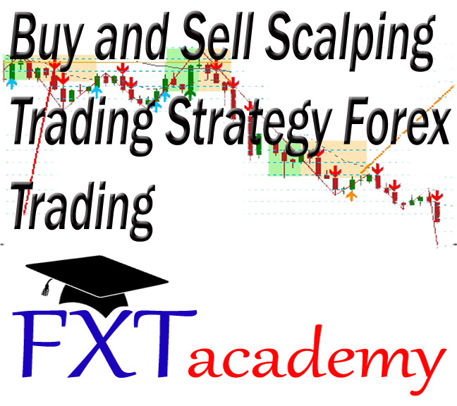 Forex trading jobs in india