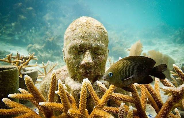 メキシコ・カンクンにある海の中の美術館??サンゴも守る?【a】 MUSA海底美術館 彫刻はサンゴの苗床