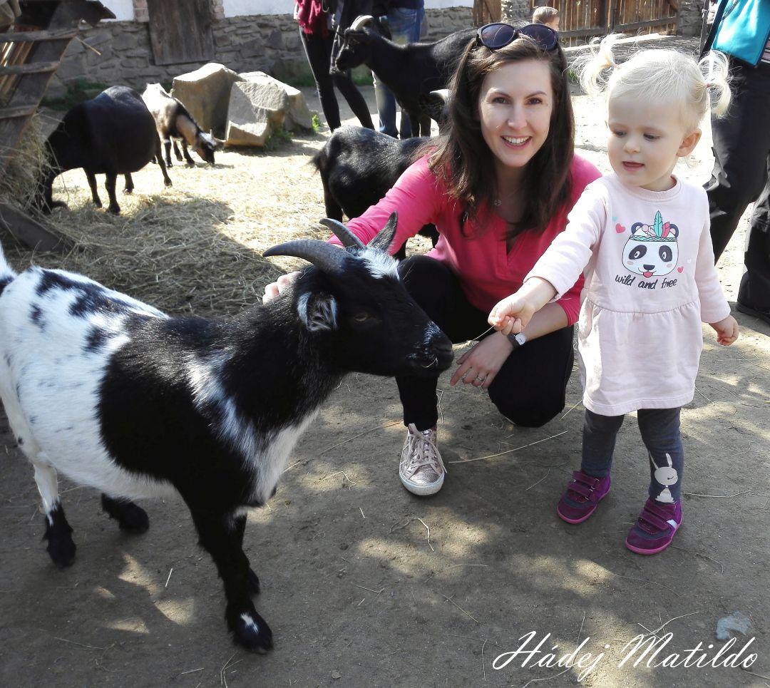 respektující výchova, montessori, nevýchova, děti, mateřství