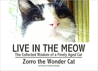 https://www.amazon.com/Live-Meow-Zorro-Wonder-Cat/dp/1544836899
